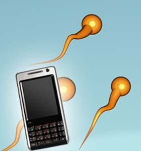 cell phones reduce sperm counts