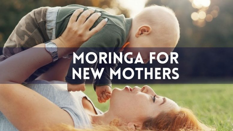 Moringa for new mothers